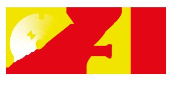 2GS logo