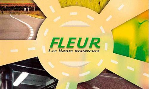 SA FLEUR - Champdôtre (21)
